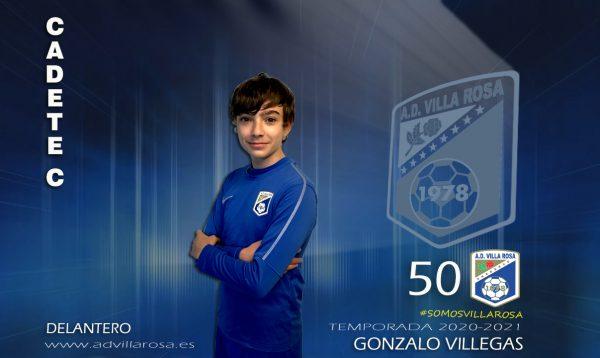 50_Gonzalo Villegas